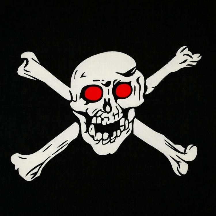 [해외]100 % 코튼 적목 현상 큰 해골 펑크 힙합 머리 장식 헤어 넥 손목 랩 밴드 남성용 네커크 치프 스퀘어 헤드티 커 커프/100% Cotton Red-eye Big Skull Punk Hip-hop Headwear Hair Neck Wrist Wrap Band